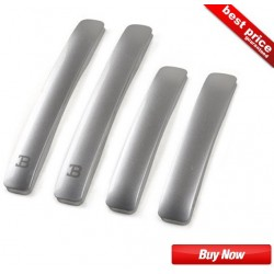 Buy Black Label (BL) Silver SimpleLine Door Guards at low prices-RideoFrenzy
