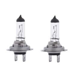 H4 Premium Halogen Headlight Bulb (12V, 60/55W)